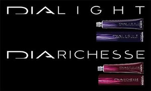 Colour chart LOREAL DIARICHESSE DIALIGHT