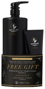 Paul Mitchell Awapuhi Wild Ginger Smooth Set