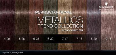 schwarzkopf igora royal metallics - New Dark Blond Hair Color