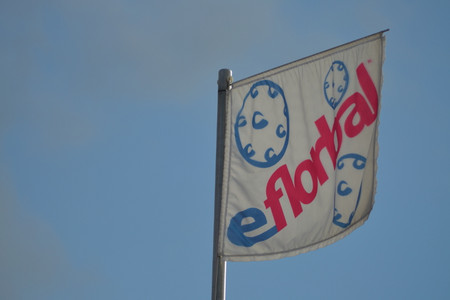eFlorbal flag